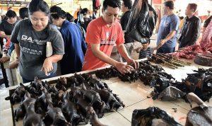 Pasar Tomohan Manado merupakan salah satu Pasar Makanan Ekstrem yang ada di Indonesia.