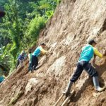 Relawan Desa Bojanegara, Sigaluh, Banjarnegara menanam akar wangi atau vetiver di lokasi yang pernah terjadi longsor.
