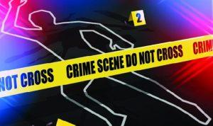 Ilustrasi Pembunuhan Siswi SMP di Sawah Besar Jakarta Pusat.