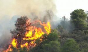 Kebakaran Hutan Lahan di Dumai, Riau kembali terjadi. (Ilustrasi)