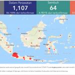 Update Persebaran Virus Corona di Indonesia Terbaru