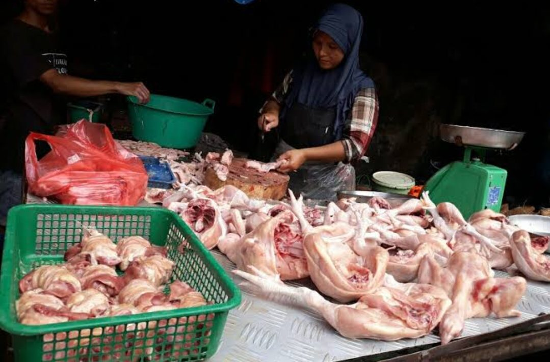 Ilustrasi, Harga daging ayam di Probolinggo masih tinggi. (Foto: Medaninside)