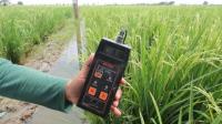 Peneliti dari Balitbangtan Kementerian Pertanian menunjukkan hasil pengukuran salinitas atau kadar keasinan pada areal pertanaman padi