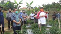 Gubernur Banten Wahidin Halim Perkuat Sektor Ekonomi Pasca Covid-19