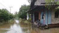 Update Daerah Terdampak Banjir di Kabupaten Katingan Provinsi Kalimantan Tengah